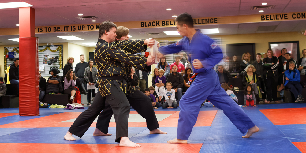 Coquitlam Martial Arts Classes for Adults.
